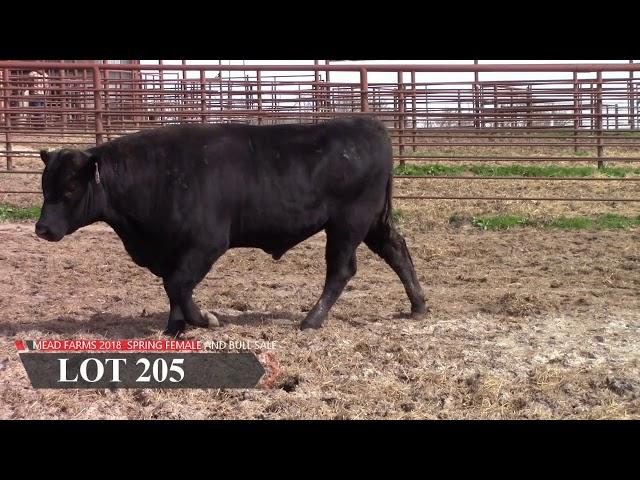 Mead Farms Lot 205