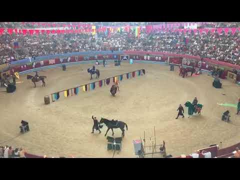 La hípica medieval toma la plaza de toros