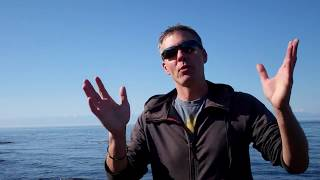 Grateful Dead - Seaside Chat: Dave's Picks Vol. 27