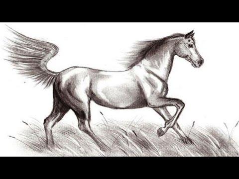 Цыганские лошади смотреть прямо сейчас и бесплатно!