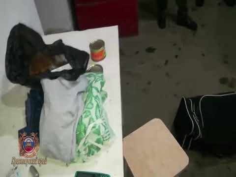 В Ермаковском районе водитель в продуктах перевозил наркозелье
