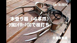 木登り器(4本爪)で枝打ち20140419GoPro thumbnail