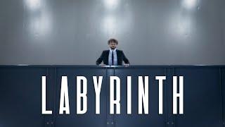 LABYRINTH - DAVID GREILSAMMER