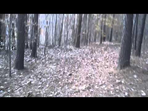 Shot At By A Deer Poacher!