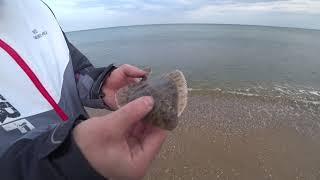 Морская рыбалка Одесская обл Ловим камбалу глоссу 2019