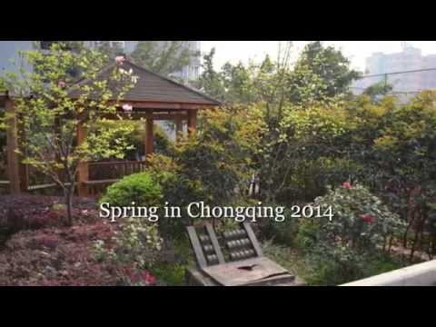 China Immersion 2014: Spring in Chongqing