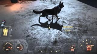 Fallout 4  баг-глюк дублирование