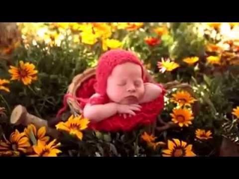 Trend Foto Bayi Baru Lahir Yang Lucu Menggemaskan Youtube