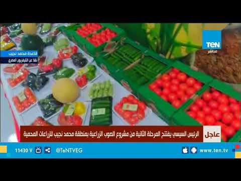 السيسي يتفقد الصوب الزراعية الجديدة بقاعدة محمد نجيب