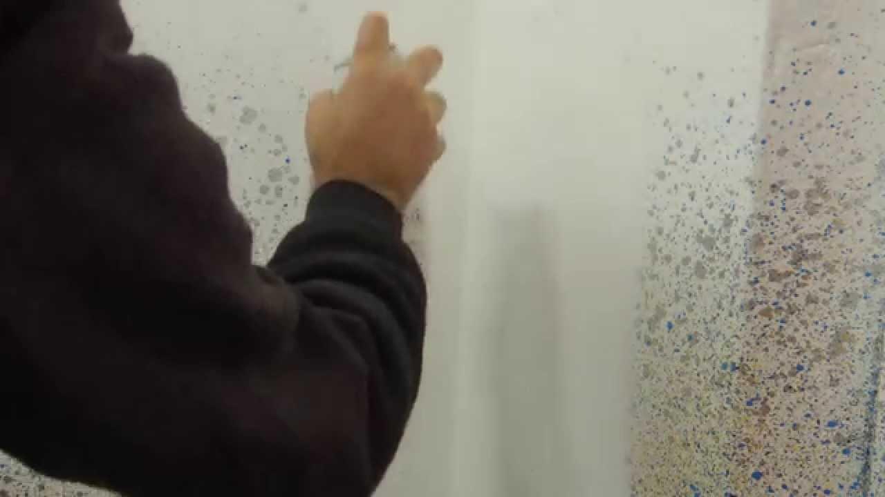 Como quitar manchas de moho de la pared moho en las - Manchas de moho ...