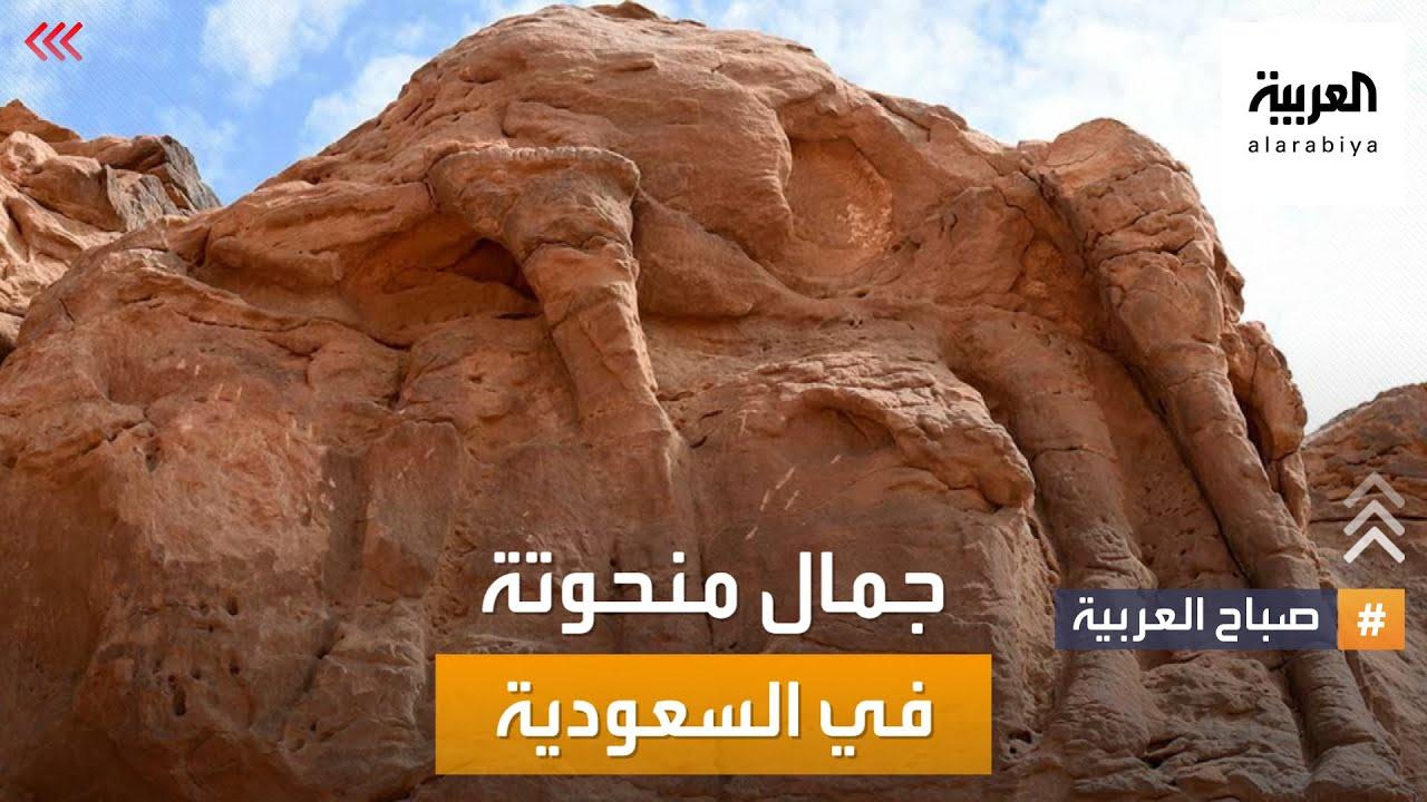صباح العربية | جمال منحوتة في شمال السعودية هي الأقدم في العالم  - نشر قبل 42 دقيقة