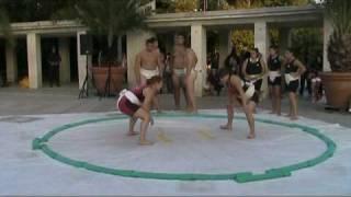 Демонстрация по сумо на входа на морската градина