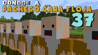 Pacheco Cara Floja 37 | COMO HACER UN CLON en Minecraft