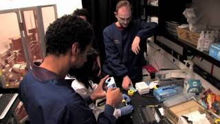 The Optogenetics Innovation Lab: Training on the Frontier