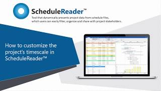 How to customize the project's timescale in ScheduleReader