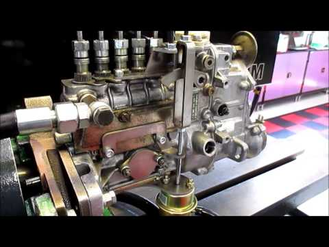 Dieselmeken Shows 8mm 242cc Pump For Mercedes OM605 Crazy Jim Edition
