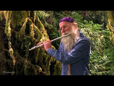 Dean Evenson Plays Peaceful Flute Music in Forest