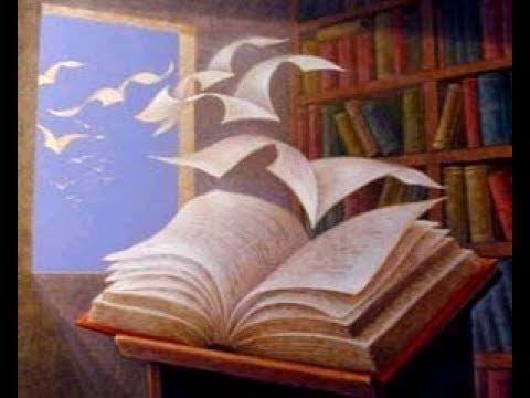 ♥°°•°°♥Niente tiene più compagnia quando si e tristi come meraviglioso libro da leggere.♥°°•°°♥