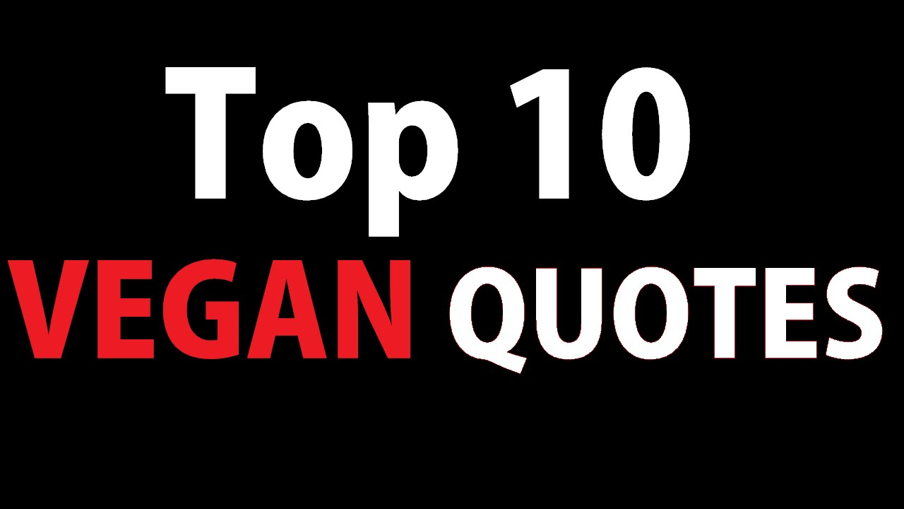Vegan Quotes Magnificent Top 10 Vegan Quotes  Youtube