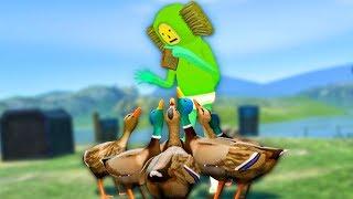 literally feeding ducks (big mistake)