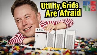 Why Utility Grids are Afraid of Elon Musk
