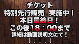 舞台「野良女」、公演まであと45日! 主演・佐津川愛美さんが毎日質問に...