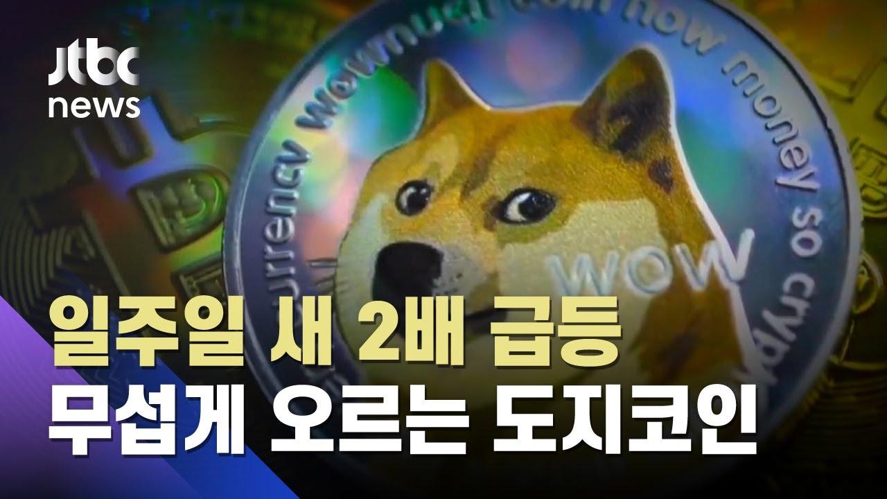 취미 삼아 만든 도지코인 '시총 4위'…모더나·GM 제쳤다 / JTBC 뉴스ON