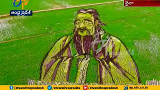 Avalokiteshvara Picture in Paddy Crop | Draws Attention in China