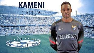 Fenerbahçe Carlos Kameni'yi Transfer Etti