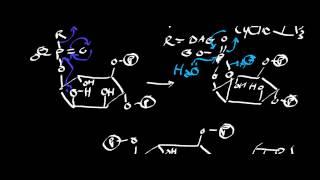 Phospholipase C, IP3, DAG, and Ca2+