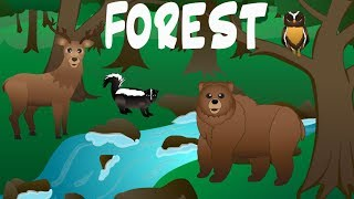 Forest Animals Video for Children – Forest Animal Spelling Songs for Kids –Preschoolers Kindergarten