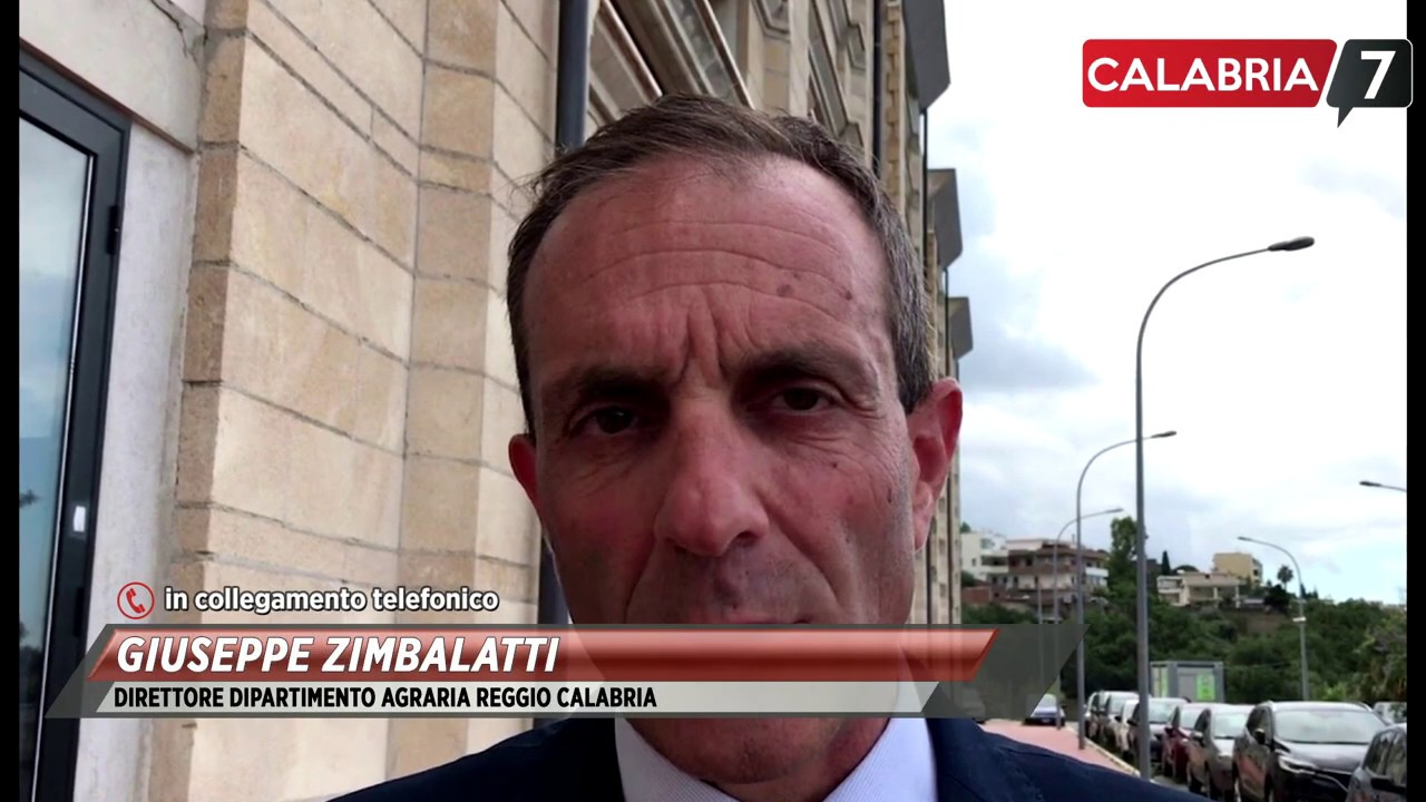 Intervista a Giuseppe Zimbalatti Reggio Calabria - YouTube