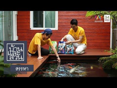 บ้านและสวน | สรรหา | อาหารปลา Optimum Hi Pro
