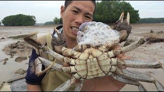 大毛蟹都往海里跑,小池赶海抓6斤,带回家一锅蒸,家人都乐坏了
