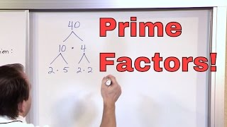 Prime Factorization - 5th Grade Math - Finding Factors of a Number (Factoring) - Math Homework Help! thumbnail