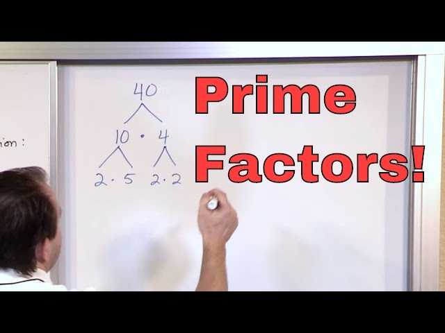 Prime Factorization    th Grade Math   Finding Factors of a Number     YouTube