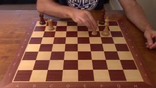 Chess Endgame Fundamentals: First-Rank Defense