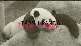 Trash Panda Song with Lyrics