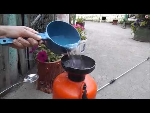 Подкормка растений борной кислотой
