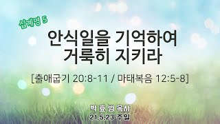 2021년 5월 23일 4부 주일예배 (청년부예배)