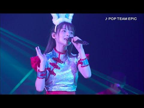 上坂すみれ「pop Team Epic」「上坂すみれのノーフューチャーダイアリー2019 Live Blu-ray」より
