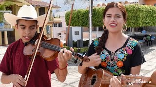 """El Cuarteto Los Cantores de Champayán tocan """"El Querreque"""" desde Tantoyuca Veracruz"""