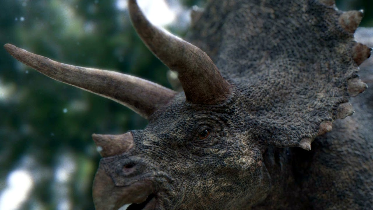 triceratops sounds j p youtube