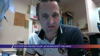 Yvelines | Activité en hausse pour les buralistes yvelinois