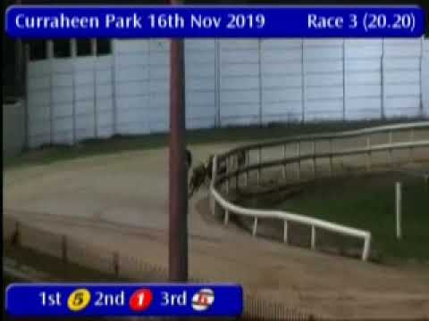 IGB - The Find Us Facebook  16/11/2019 Race 3 - Curraheen Park