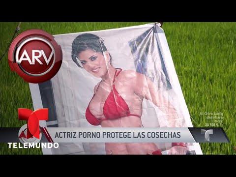 Foto de actriz porno protege las cosechas en la India | Al Rojo Vivo | Telemundo