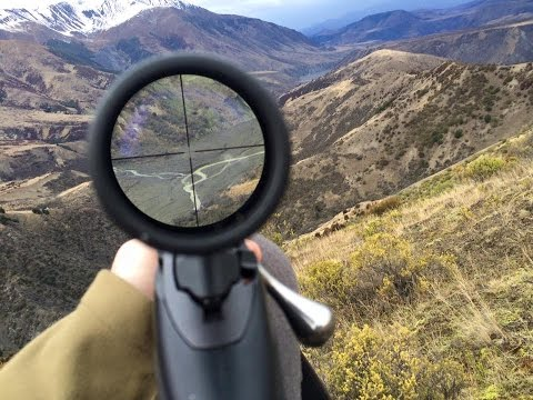 Hunting Trip In North Canterbury
