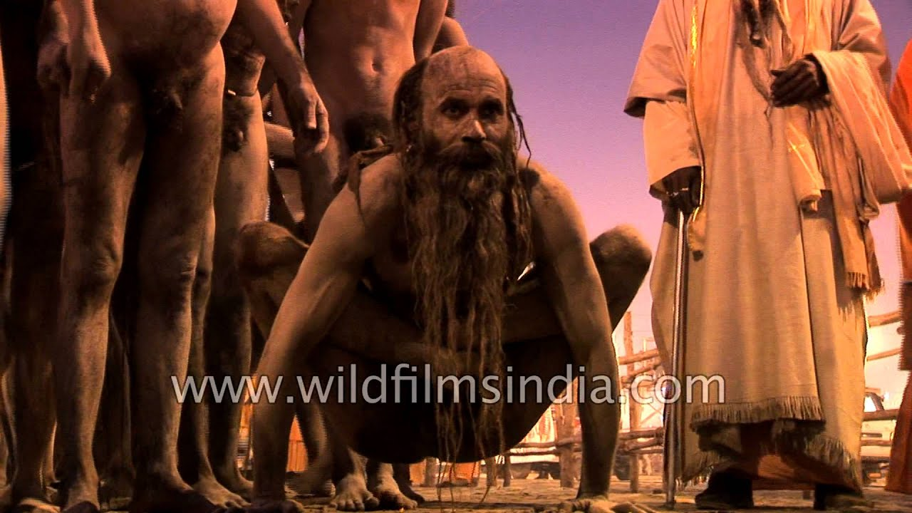 Naked Yoga Being Performed By Naga Sadhu In Kumbh Mela