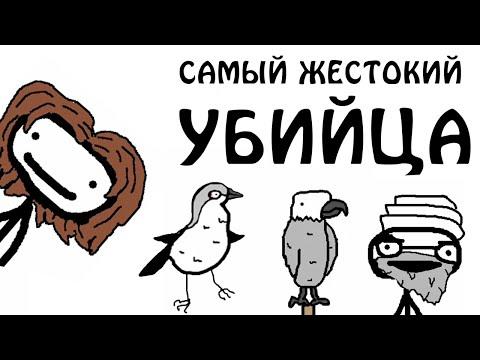 """""""Очень жестокая птица""""- Академия Сэма О'Нэллы (Озвучка Broccoli)"""