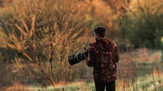 Gdzie fotografować dzikie zwierzęta i ptaki? Wybór miejsca | Fotografia przyrodnicza